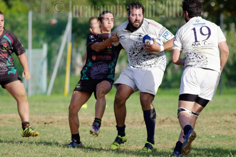 rugby clanis cortona